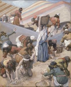 The Israelites gather manna.
