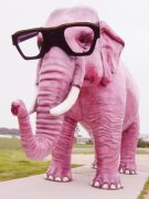 Go ahead. Try not to think about pink elephants now. (http://womenssuccesscoaching.com/2012/03/self-promotion-the-pink-elephant-in-the-room/)