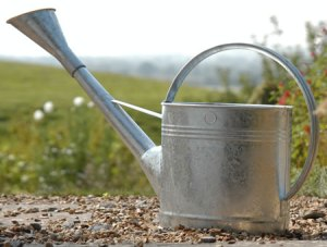 waterfall watering can gtw-w9