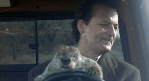 'Don't drive angry,' Bill Murray urges Punxsutawney Phil in the 1993 comedic masterpiece, Groundhog Day.