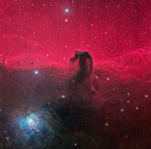 The Horse's Head Nebula. (I wonder if we'll discover a Horse's Butt Nebula someday...)