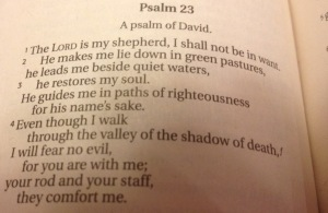 This is a photo of how Psalm 23 begins in a copy of the NIV printed in 2001.