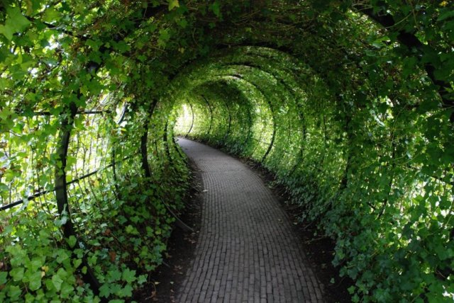 If Heaven is like Eden, could the tunnel of 'light at the end of the tunnel' fame look like this?