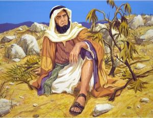Jonah grumbles about Gods decision to spare the Ninevites.